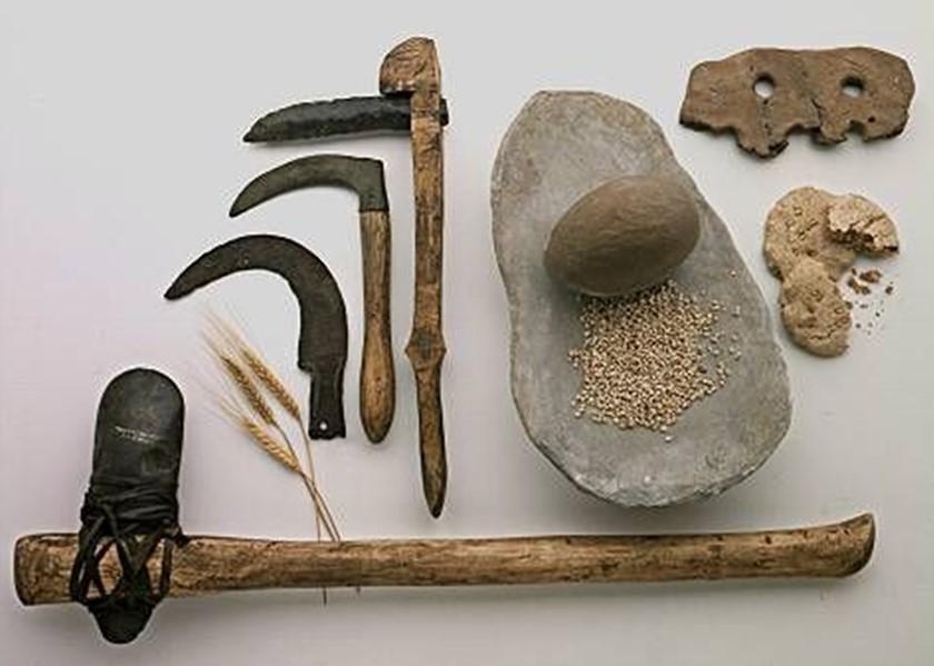 Pendik Neolitik Devir Görselleri